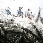 چهارمین جشنواره عکس زمان - اصغر بشارتی ، نگاه آزاد و خلاق به مفهوم زمان | نگارخانه چیلیک | ChiilickGallery.com