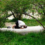 گروه خاکستری - زینب زمانی | نگارخانه چیلیک | ChiilickGallery.com