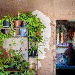 جشنواره عکس سلامت نیشابور - سیدعلی حسینی فر | نگارخانه چیلیک | ChiilickGallery.com