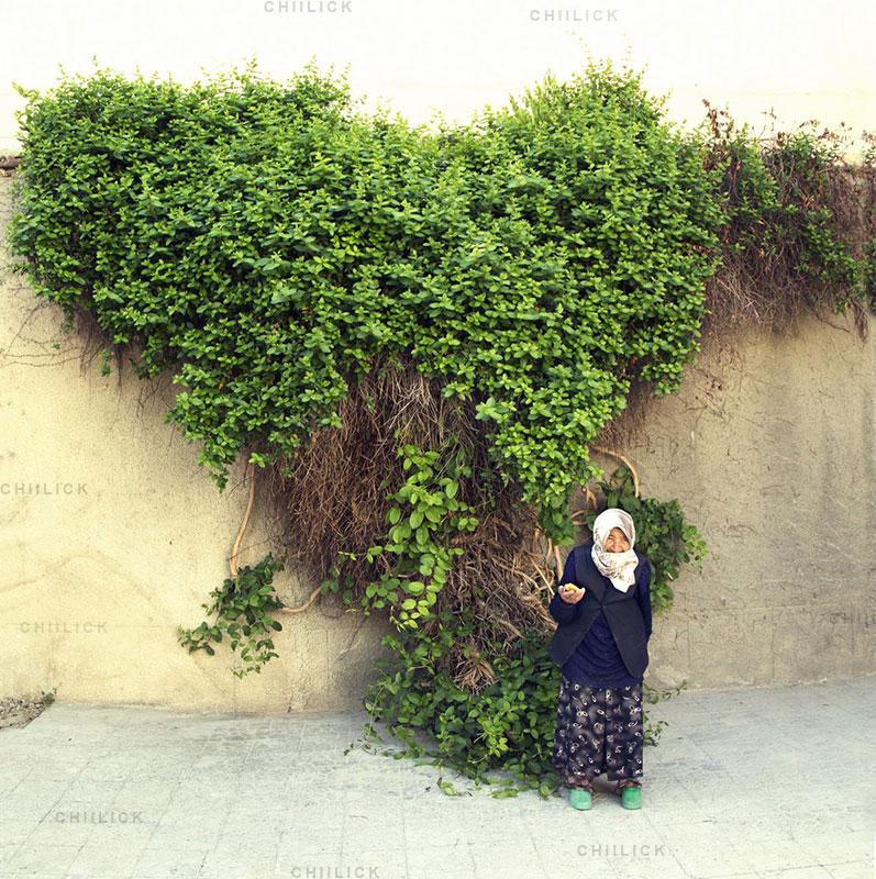 جشنواره عکس سلامت نیشابور - محمد صفرپور | نگارخانه چیلیک | ChiilickGallery.com