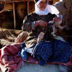 دومین مسابقه عکس فرش دستباف - محمدرضا چایفروش | نگارخانه چیلیک | ChiilickGallery.com