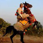 نخستین نمایشگاه صنعت اسب - حسن فتاحیان ، رتبه سوم | نگارخانه چیلیک | ChiilickGallery.com