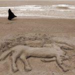 نخستین نمایشگاه صنعت اسب - حامد نیرومندقوچانی | نگارخانه چیلیک | ChiilickGallery.com