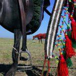 نخستین نمایشگاه صنعت اسب - مجید خالقی مقدم | نگارخانه چیلیک | ChiilickGallery.com
