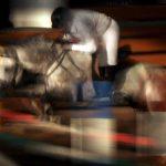 نخستین نمایشگاه صنعت اسب - مرتضی رفیع خواه | نگارخانه چیلیک | ChiilickGallery.com