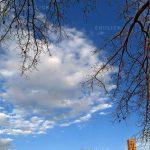 شهر بادگیر ها - امین ابراهیمی | نگارخانه چیلیک | ChiilickGallery.com