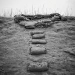 پنجمین جشنواره عکس زمان - وحید قاسمی زرنوشه ، راه یافته به بخش الف | نگارخانه چیلیک | ChiilickGallery.com