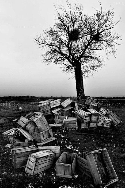 پنجمین جشنواره عکس زمان - امیر مافی بردبار ، راه یافته به بخش ب | نگارخانه چیلیک | ChiilickGallery.com