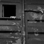 دومین جشنواره عکس شهریار - مهدی خزایی | نگارخانه چیلیک | ChiilickGallery.com