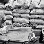 دومین جشنواره عکس شهریار - مرتضی صفری رجاء | نگارخانه چیلیک | ChiilickGallery.com