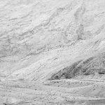 سومین سوگواره قاب خالی خورشید - رضا واعظ پور ، شایسته تقدیر | نگارخانه چیلیک | ChiilickGallery.com