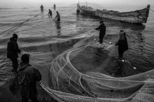 عکاس: افشین میرزائی